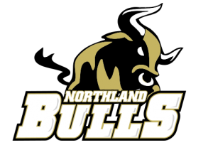 Northland Bulls football team